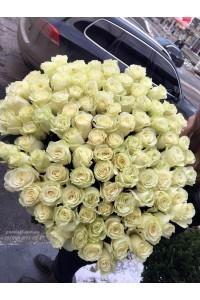 101 белая роза 90 см