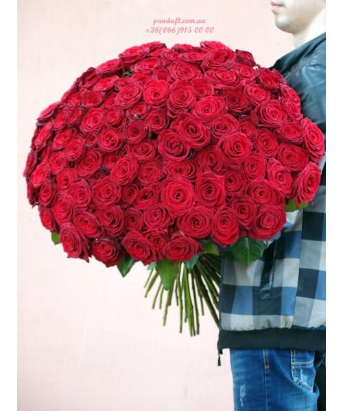 101 красная роза 80 см