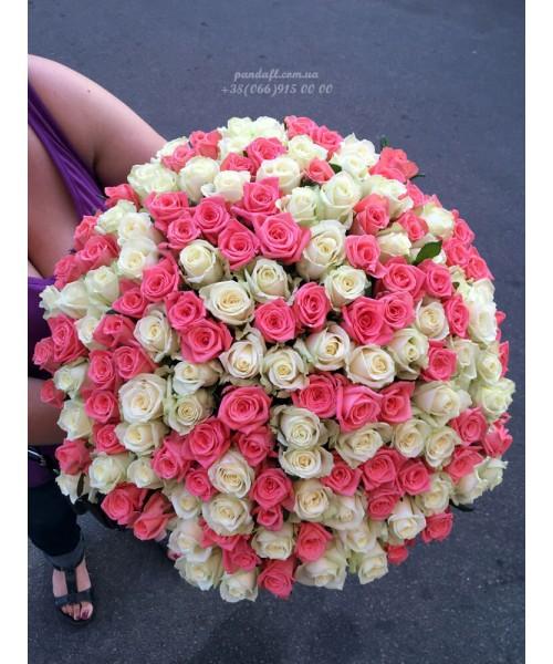 101 роза микс белых и розовых 70 см