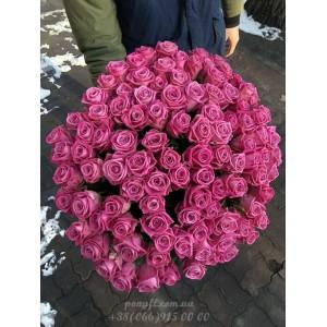101 розовая роза Аква 60 см