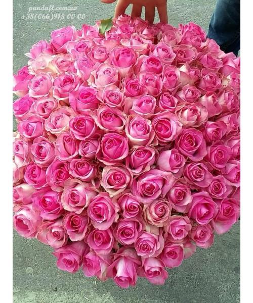 101 розовая роза Канди 60 см