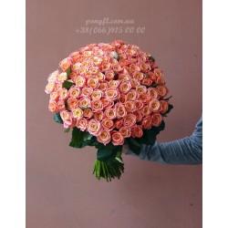 101 розовая роза Мисс Пигги 60 см