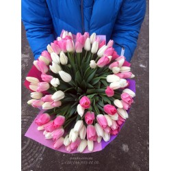 101 тюльпан микс 2 цвета