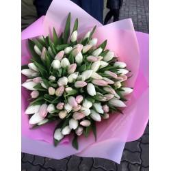 101 тюльпан микс 2 цвета Нежный