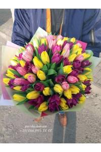 101 тюльпан микс 3 цвета
