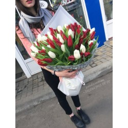101 тюльпан микс белый и красный