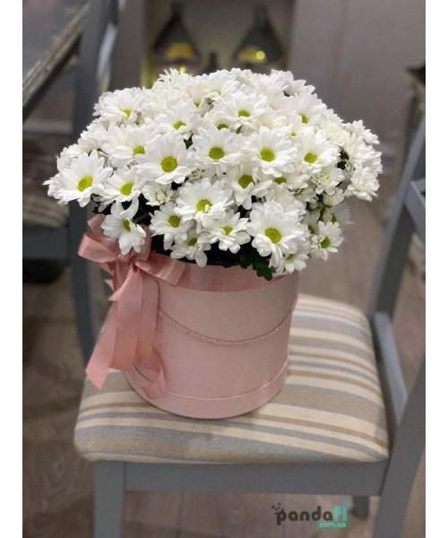 11 белых хризантем в коробке
