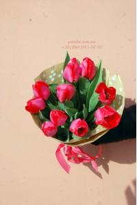 11 красных тюльпанов