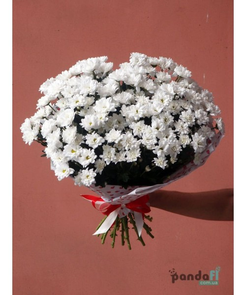 13 белых хризантем