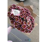 15 бордовых хризантем