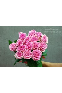 15 розовых роз Аква 70 см