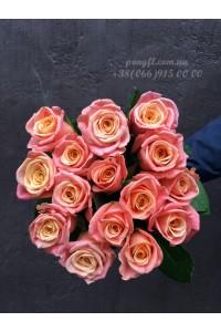 15 розовых роз Мисс Пигги 60 см