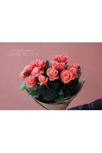 15 розовых роз Мисс Пигги 70 см