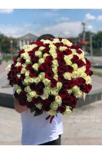 151 роза микс красных и белых 70 см