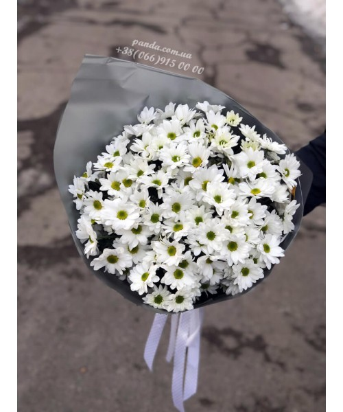 17 белых хризантем