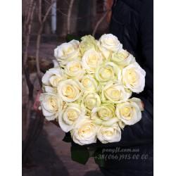 19 белых роз 70 см