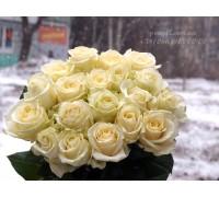19 белых роз 90 см