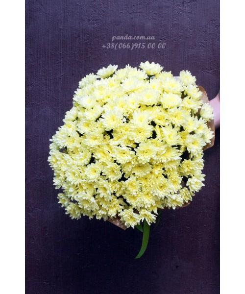 19 желтых хризантем