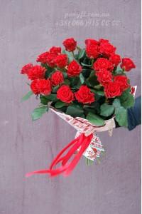 19 красных роз Эль торо 60 см
