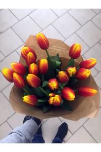 19 красно-желтых тюльпанов
