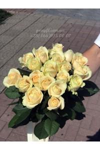 19 кремовых роз 60 см
