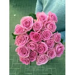 19 розовых фоз Аква 70 см