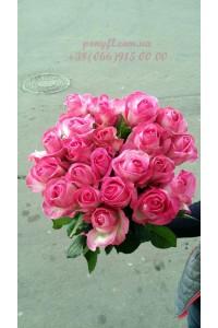 19 розовых роз Канди 70 см