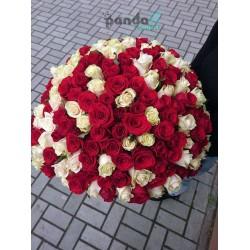201 роза микс красных и кремовых 70 см