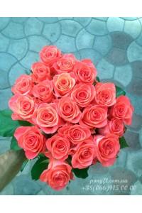 25 коралловых роз 60 см
