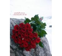 25 красных роз Престиж 90см