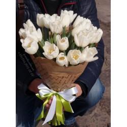27 белых тюльпанов