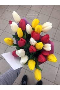 27 тюльпанов микс