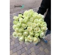 31 белая роза 60 см
