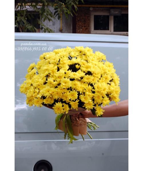 31 желтая хризантема