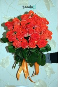 31 коралловая роза 70 см