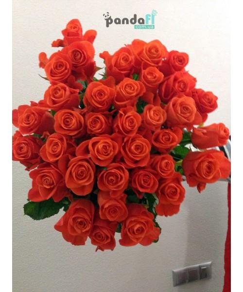 31 коралловая роза 80 см