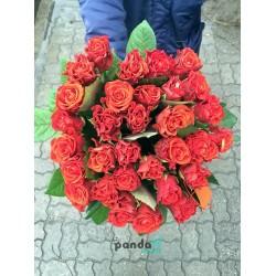 31 красная роза Эль Торо 50 см