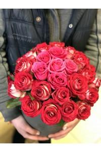 31 розовая роза в коробке
