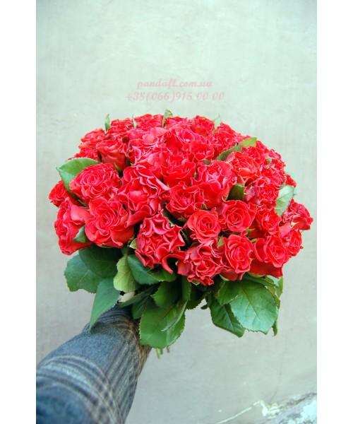 35 красных роз Эль Торо 50 см