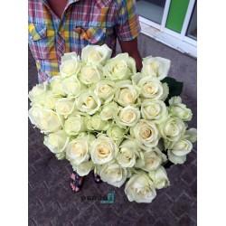 41 белая роза 80 см