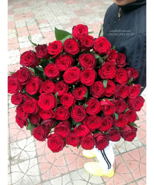 51 красная роза Гран При 70 см