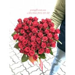 51 красная роза Престиж 60 см