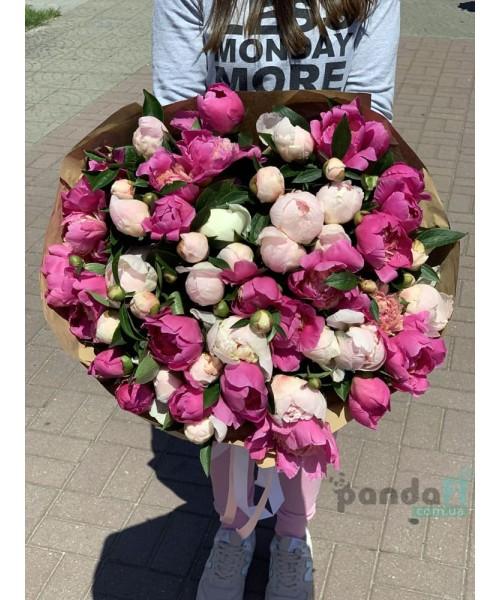 51 пион белый и розовый
