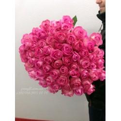 51 розовая роза Канди 70 см