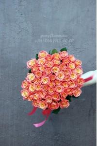 51 розовая роза Мисс Пигги 60 см