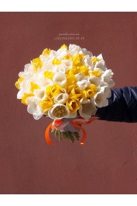 51 тюльпан микс белых и желтых