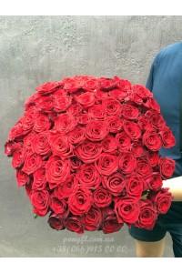 75 красных роз 70 см