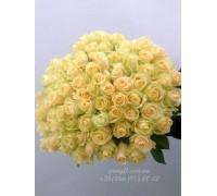 75 кремовых роз 60 см