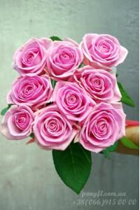 9 розовых роз
