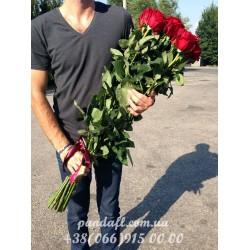 Роза 110 см